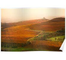 Vineyards landscape Poster