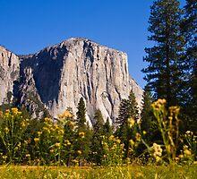 The mighty El Capitan, Yosemite National Park by Sue Leonard