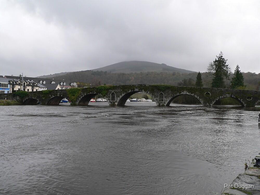 Graiguenamanagh Bridge [Please View Larger] by Pat Duggan