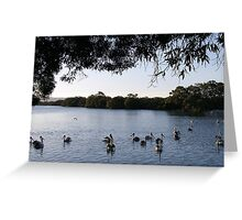 Pelicans at Sunset! Greeting Card