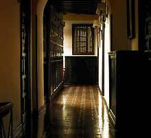 Down the Hall by Luis Lacorte
