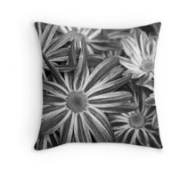 Verigated Daisies Throw Pillow