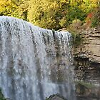 Webster's Waterfall by deb cole