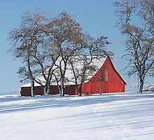 Old Red Barn On A Winter Day In Eastern Washington's Palouse Country by JaneLoughney