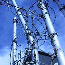 Gate, Mowbray Street by Steven Carpinter