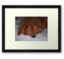 'Sleeping Cindy' Framed Print