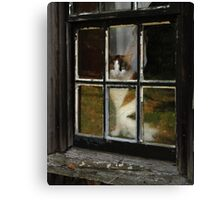 Buffy Looking Out Canvas Print