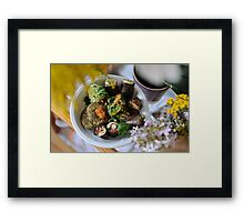 raw sushi & raw crackers dish Framed Print