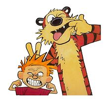 calvin and hobbes  by BonnieAnne
