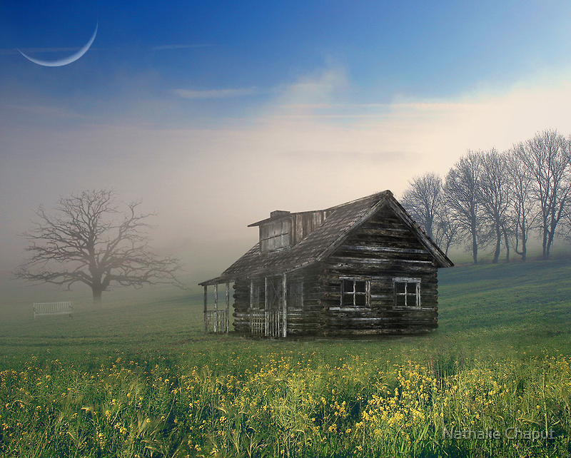 Reminds him of home in Texas! by Nathalie Chaput