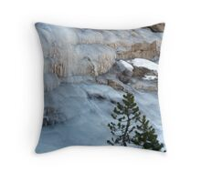 """Frozen Solid"" Throw Pillow"