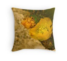A Cactus Blooms. Throw Pillow