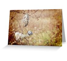 Fall Cocoons Greeting Card