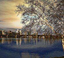 Over the bridge by LudaNayvelt