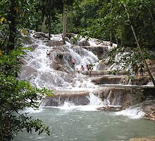 Dunns River Falls, Jamaca by Rosalie Scanlon