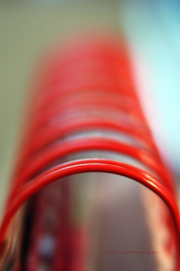 Tubular Spine © Vicki Ferrari Photography by Vicki Ferrari