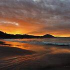 Morning Beach by Randall Scholten