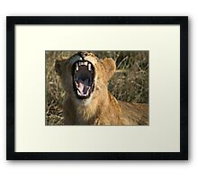 Hey Doc, Can you please check my front molar? Framed Print