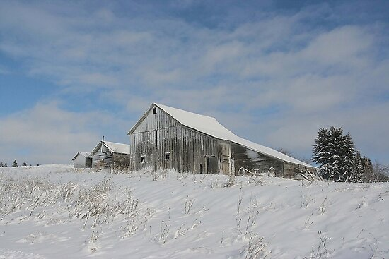 Winter Barn Scene In Northern Idaho by JaneLoughney