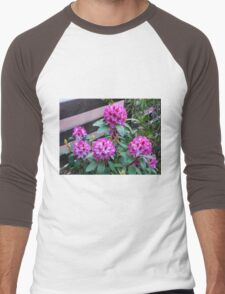 Rhododendron in Bloom Men's Baseball ¾ T-Shirt