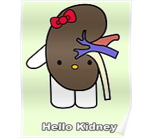 Hello Kidney Poster