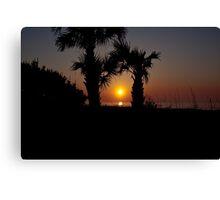 Palmetto Sunrise Canvas Print