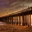 Ventura Pier by Cheryl  Lunde