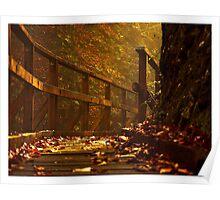 red light autumn Poster