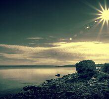 Sunny Days by Bogdan Ciocsan
