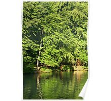 Green lake lagoon. Poster