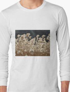 Wind and Light Long Sleeve T-Shirt