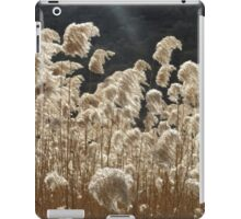Wind and Light iPad Case/Skin