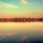 autumn morning by Bogdan Ciocsan