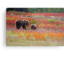 Grizzly family Metal Print