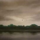 Lone Flight by Paul Horton