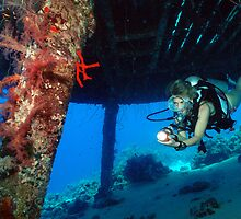 Jacques Cousteau's Precontinent II by Frank Schneider