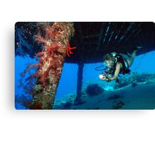 Jacques Cousteau's Precontinent II Canvas Print