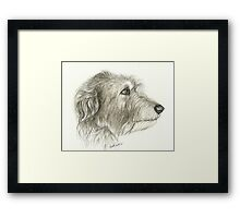Irishwolfhound Ink 11x14 Framed Print