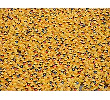 Ducks, ducks, ducks and, er, ducks. Photographic Print