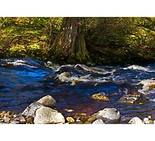 River Cover Photographic Print