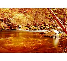 Water Curses Photographic Print