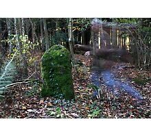 Rempstone Stone Circle Photographic Print