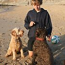 39. Remy & Maya & Pedro his Labradoodles by Cathie Brooker