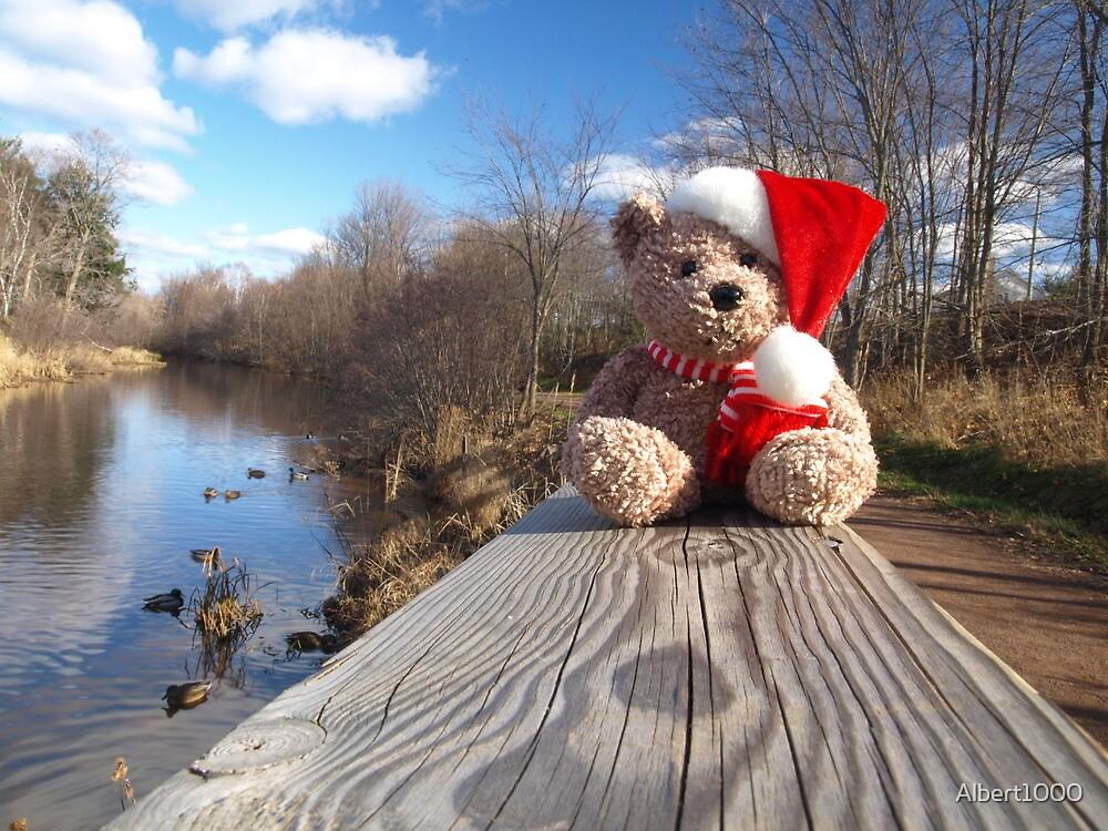 Christmas bear waiting for Santa by Albert1000