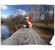 Christmas bear waiting for Santa Poster