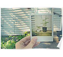 Polaroid Memories Poster