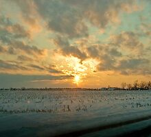 Winter sunset - Northwestern Ohio by Susana Weber
