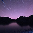 Star Trails by Anne McKinnell