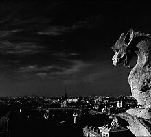 Gargoyle, Notre Dame, Paris by aldogallery