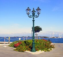 Floral Lamp-post by sstarlightss
